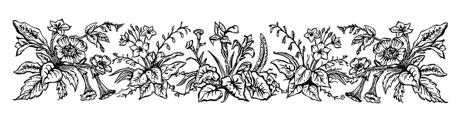 Vinatge floral Border. Hand-painted SVG, black outline/linework.
