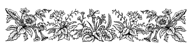 Vinatge floral Border. Hand-painted SVG, black outline/linework.