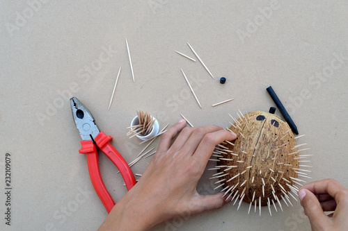 Hedgehog Artwork Diy Craft From Coconut Shell And Toothpicks Pliers