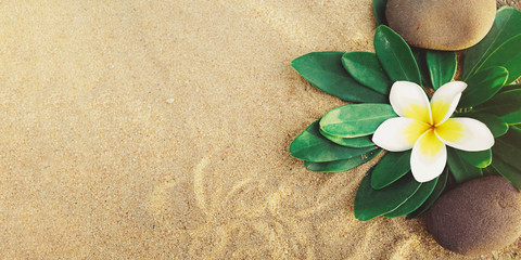 Foto op Canvas Frangipani flower with pebbles on sand