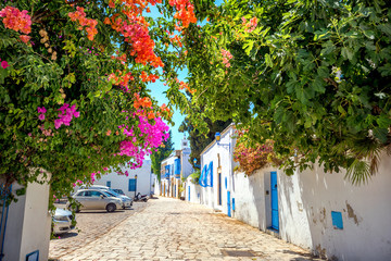 Cityscape of blue and white town Sidi Bou Said. Tunisia, North Africa