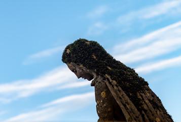 Statue de la vierge Marie recouverte de mousse