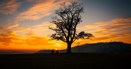 Loving couple watching sunset Great Lhota under an old lonely tree on a hill beautiful orange sunset sky full of clouds...