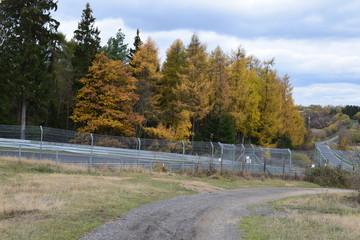 Blick über Herbstwald mit Hocheichen-Teil der Nordschleife 11/18
