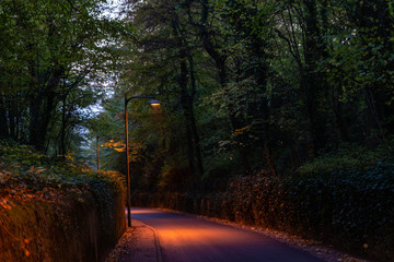Descente d'une route le soir avec les lampadaires allumés en Moselle