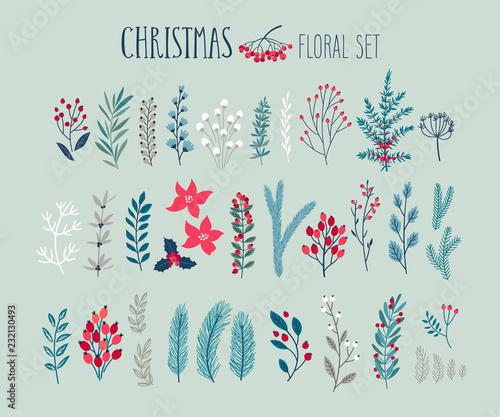 Wall mural Christmas floral set - hand drawn