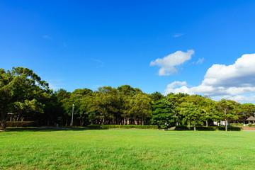 [日本] 芝生が広がる公園(No.5988)