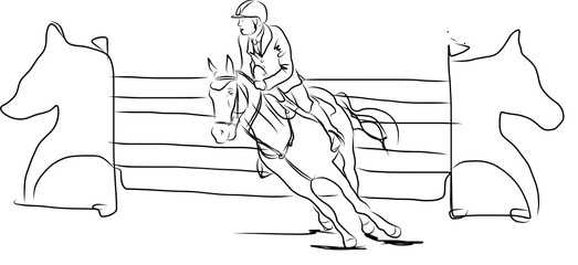 horse jumping obstacles during equestrian