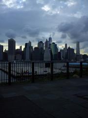 Overlooking the Manhattan skyline from the Brooklyn promenade