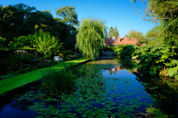 Old English Country House with large pond filled with liles
