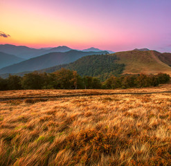 awesome summer sunrise landscape, breathtaking morning dawn in Carpathian mountains, meadow, beech forest and hills, splendid nature image, Europe, Ukraine, discover wonderful world
