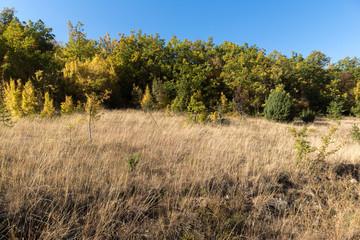 Amazing Autumn landscape of Ruen Mountain - northern part of Vlahina Mountain, Kyustendil Region, Bulgaria