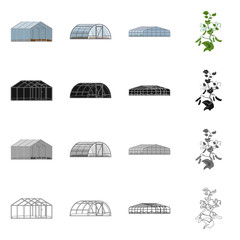 Vector illustration of greenhouse and plant symbol. Collection of greenhouse and garden stock symbol for web.
