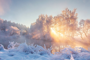 Scenery winter in sunbeams. Snowy nature. Christmas background