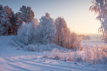 Winter morning nature landscape in sunlight on January