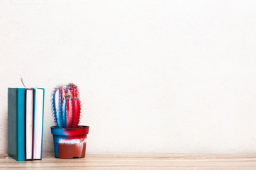 Bright colorful cactus and books on the background of a white wall