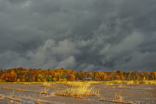 Abandoned parking lot under a dark sky with sunlight on autumn colors