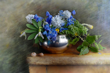 Spring flowers.Bouquet of snowdrops in a metal vase on a blue background
