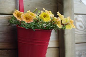 Printed roller blinds Flower shop waterlelie - bloemen
