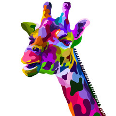 colorful giraffe head isolated on white background