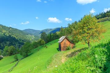 Mountain landscape in the Carpathians, Verkhovyna