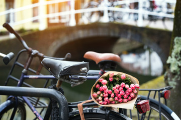 tulips on a bike