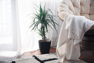 the idea of decorating a cozy room, warm and bright. Life style in the modern world
