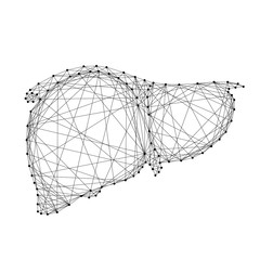 Human liver organ gland of external secretion body from abstract futuristic polygonal black lines and dots. Vector illustration.