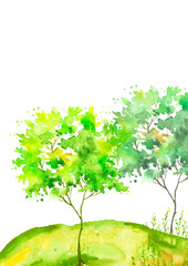 Watercolor summer landscape. Green tree on a bright grass. On a white background. Green tree on a hill with grass, plants. Country landscape background