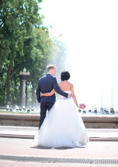 rear view.bride groom looking at the fountain