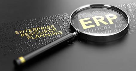 Business Management Software. ERP, Enterprise Resource Planning Solutions