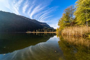 Wasserspiegelung, Herbst, Schwansee, Füssen, Kreis Ostallgäu, Bayern, Deutschland