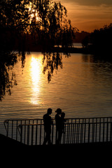 Sunset over the river. The outline of the tree in the foreground and the silhouettes of a family with a child
