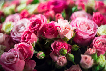Closeup image of beautiful bouquet with amazing pink and white roses. Valentines card, womens day, mother's day.  Floral greeting card