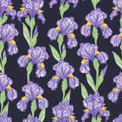 Hand Drawn Seamless Floral Pattern with Irises - vector illustration