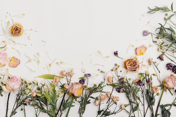 Dried Flowers Flat lay  on white Background