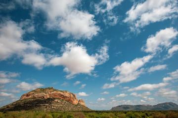 african landscape, nairobi, kenya