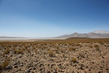 Farallon de Tara, the plateau overlooking the salt lake, Salar de Tara Natural Reserve, San Pedro de Atacama, Chile