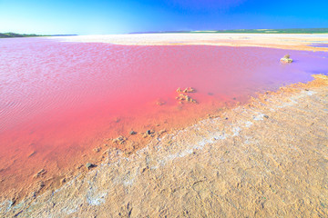 Staande foto Oceanië Pink Salt Lake at Gregory in Western Australia. Scenic shore of Hutt Lagoon between Geraldton and Kalbarri, with a vivid pink color for the presence of algae in summer.Horizon blue sky with copy space