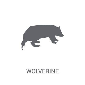 Wolverine icon. Trendy Wolverine logo concept on white background from animals collection