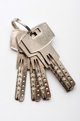 keys to the apartment. house keys