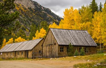 Cabins in Aspen