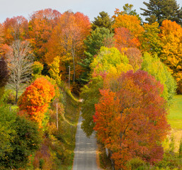 Roads are often bordered by vibrant color as the leaves change in Autumn