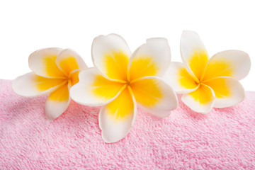 frangipani on a pink towel