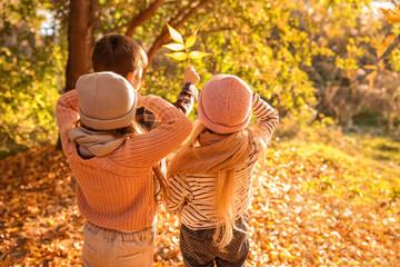 Cute little children in autumn park