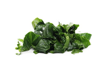 Fresh spinach leaves isolated on white background
