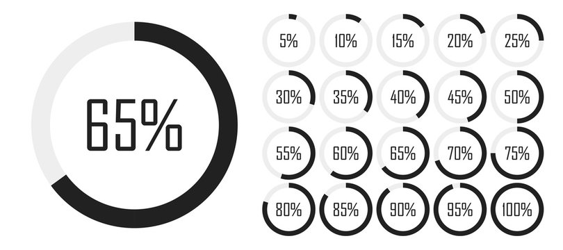 Set of circle percentage diagrams from 0 to 100 for infographics, lignt, 5 10 15 20 25 30 35 40 45 50 55 60 65 70 75 80 85 90 95 percent. Vector illustration