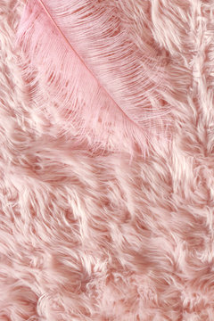 Furry Pink Feather Texture