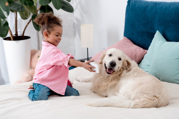 adorable african american child sitting on the bed and shows smartphone screen to dog