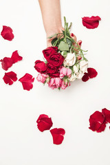 flowers roses in hands of girl, top view, little white pink red roses, red rose petals, white background